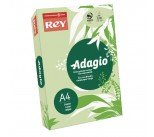 Adagio Bright Green A4 Coloured Card 160gsm Pack 201.1212